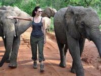 gli elefanti, Kristin Davis - 24-03-2011 - Donne per un mondo migliore: Victoria Beckham ambasciatrice ONU