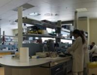 IRST Istituto Scientifico Romagnolo per lo Studio e la Cura dei Tumori - Charlotte Brosnan poteva salvarsi con il test anticancro?