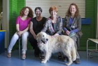 """Angiolina, Debra Buttram - Pavia - 21-05-2013 - Un cane in corsia: """"Così i bambini operati tornano a sorridere"""""""