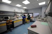 Laboratorio Genoma - 13-10-2008 - Charlotte Brosnan poteva salvarsi con il test anticancro?