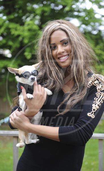 Biannca Lake - cane Arthur - Essex - 31-05-2013 - Arthur, il chihuahua da 10mila sterline