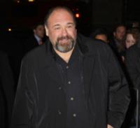 James Gandolfini - Los Angeles - 26-11-2012 - E' morto James Gandolfini della serie tv I soprano