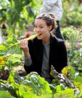 Olivia Wilde - Los Angeles - 27-12-2010 - Denzel Washington, nuova recluta nell'esercito dei vegetariani