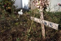 "cimitero immigrati - Lampedusa - 04-07-2013 - Lampedusa: ""Qui ho sepolto i migranti senza nome"""
