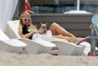 Paris Hilton - Los Angeles - 07-07-2013 - Anche i VIP in spiaggia con i fidati amici a quattro zampe