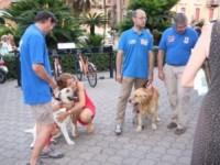 Michela Vittoria Brambilla - Alassio - 22-07-2013 - Michela Vittoria Brambilla presenta il suo Manifesto Animalista