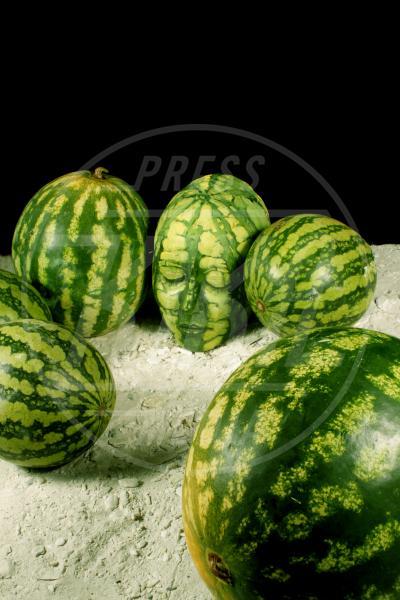 The Melon - Innsbruck - 30-08-2011 - L'arte sul corpo: il bodypainting di Johannes Stoetter