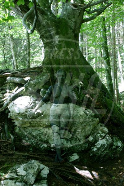 Tree on rock - Innsbruck - 10-07-2010 - L'arte sul corpo: il bodypainting di Johannes Stoetter