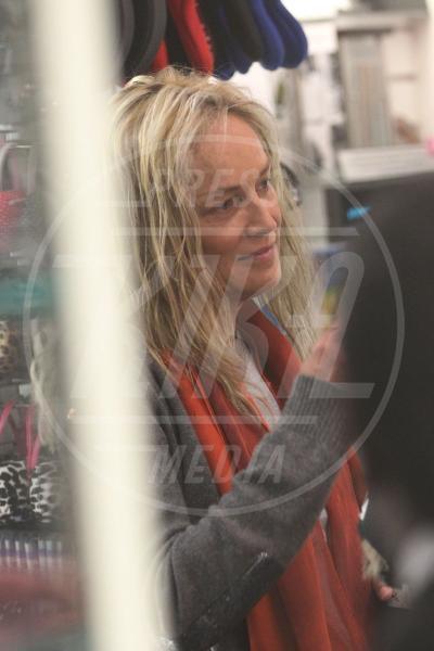 Quinn Stone, Sharon Stone - Los Angeles - 16-06-2013 - Quando il trucco non c'è, si vede eccome