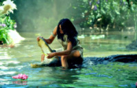 Coccodrillo, Katy Perry - 06-09-2013 - Katy Perry è la regina della giungla