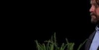 Zach Galifianakis - Los Angeles - 26-09-2013 - Justin Bieber: questa volta ti sei preso le cinghiate [VIDEO]
