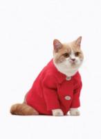 Gatto United Bamboo - New York - 04-10-2013 - Il tuo gatto vuole fare il modello? United Bamboo fa per lui!