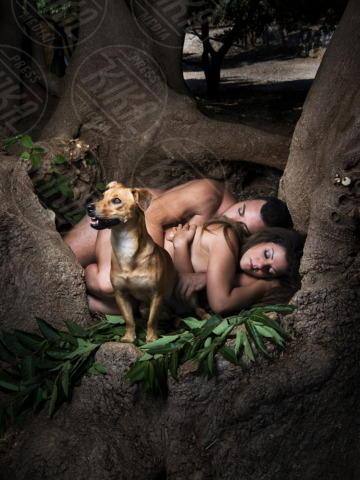 Nudi per amore - Palermo - 21-01-2013 - Nudi per amore: il calendario del canile di Palermo