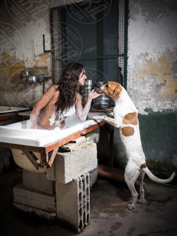 Nudi per amore - Palermo - 04-02-2013 - Nudi per amore: il calendario del canile di Palermo