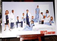 Grey's Anatomy - Beverly Hills - 08-02-2007 - Grey's Anatomy: Ellen Pompeo rinnova per la 13esima stagione