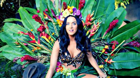 Katy Perry - 06-09-2013 - Katy Perry è in assoluto la persona più seguita al mondo