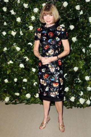 Anna Wintour - New York - 05-11-2013 - Il MoMa regala una serata tributo a Tilda Swinton