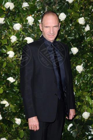 Ralph Fiennes - New York - 05-11-2013 - Il MoMa regala una serata tributo a Tilda Swinton