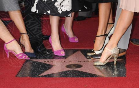 Blair Underwood, Danny Pino, Mariska Hargitay, Hilary Swank, Maria Bello - Hollywood - 08-11-2013 - Mariska Argitay è la stella 2511 della Walk Of Fame