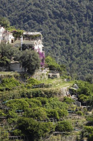 Casa Renato Brunetta - Ravello - 11-11-2013 - In Costiera Amalfitana il buen retiro di Renato Brunetta