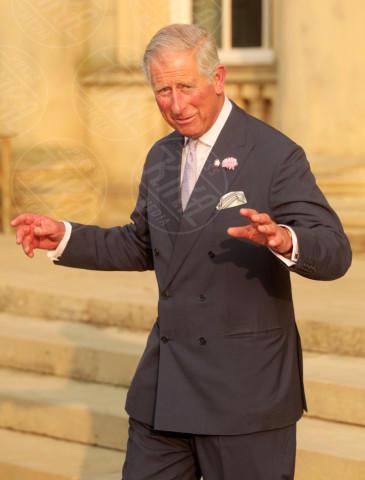 Principe Carlo - Foto 2013 - Harewood - 22-07-2013 - Duemilatredici: l'attualità in un anno di fotografie