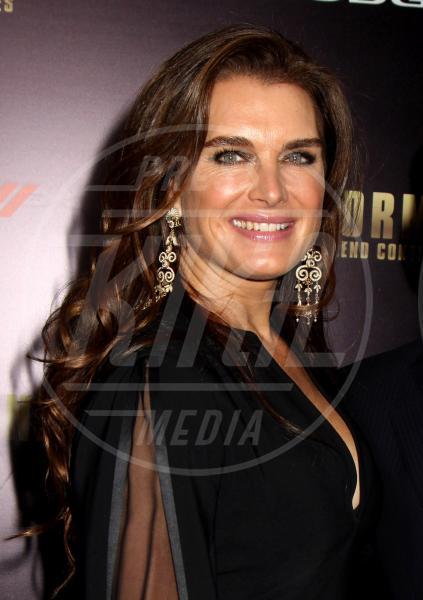 Brooke Shields - New York - 16-12-2013 - Le sopracciglia folte sono il nuovo trend