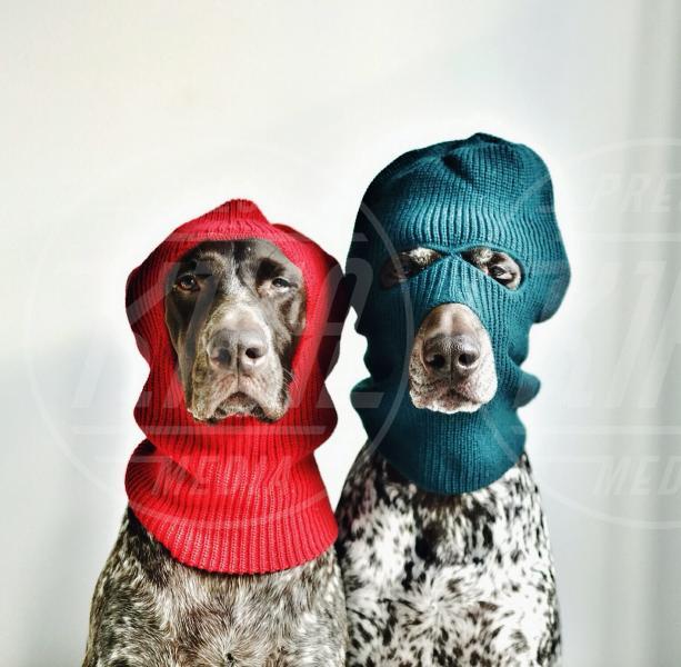 Gus McCrombie, Travis McCrombie - Il Natale di Travis e Gus, più che amici… fratelli!