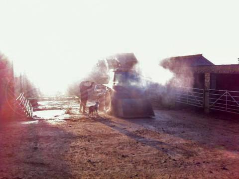 Matt Frost - Cornovaglia - 27-12-2013 - L'anno incredibile di Matt Frost: un lavoro alla settimana