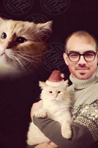 Joe Jonas - Los Angeles - 27-12-2013 - Dillo con un tweet: trionfa l'amore, in tutte le forme