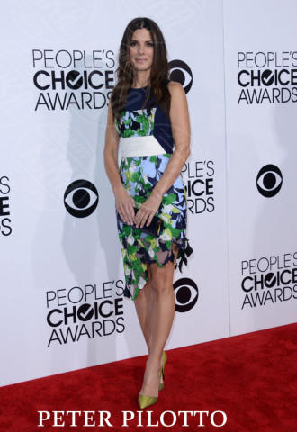 08-01-2014 - People's Choice Awards 2014: gli stilisti sul red carpet