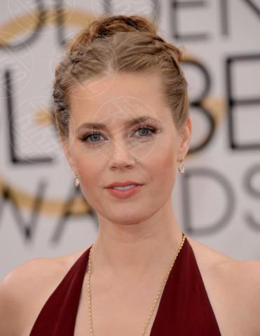 Amy Adams - Beverly Hills - 12-01-2014 - Golden Globe 2014: gli arrivi sul red carpet