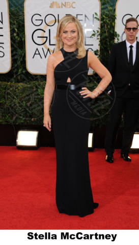 Amy Poehler - Beverly Hills - 11-01-2014 - Golden Globe 2014, il red carpet si veste retrò