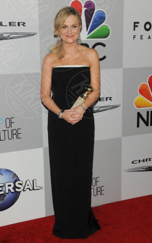 Amy Poehler - Beverly Hills - 12-01-2014 - Golden Globe 2014: gli arrivi sul red carpet