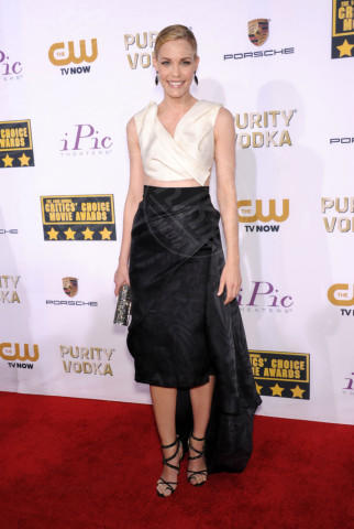 Leslie Bibb - Santa Monica - 16-01-2014 - Vade retro abito! Le scelte ai Critic's Choice Awards