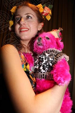 sfilata cani - New York - 08-02-2014 - New York Fashion Week: una sfilata da cani