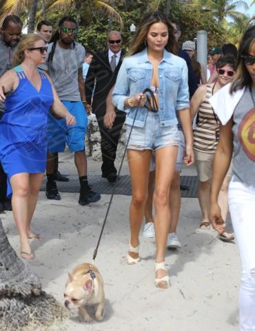 Christine Teigen - Miami - 20-02-2014 - Anche i VIP in spiaggia con i fidati amici a quattro zampe