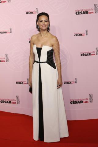 Berenice Bejo - Parigi - 28-02-2014 - Bianco e nero: un classico sul tappeto rosso!