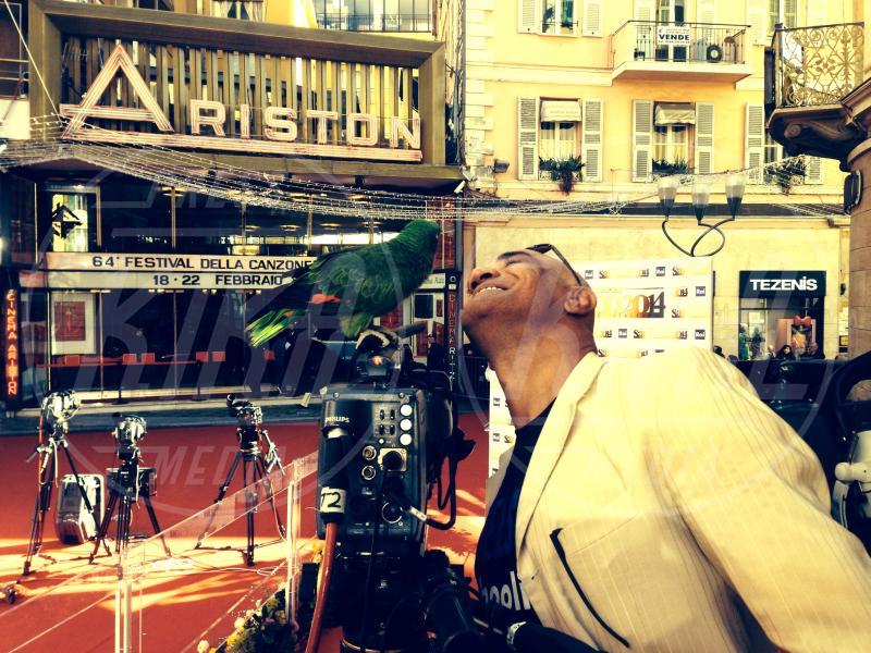 Francesco Lombardi, Ghyblj, Teatro Ariston - amore - Sanremo - 22-02-2014 - Diario di Amore, il pappagallo del Papa, da Sanremo