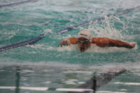 Swimming Cup 2014 - Torino - 16-07-2014 - Swimming Cup 2014, vincono Pellegrini e Magnini