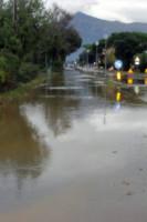 Marina di Carrara, Alluvione - 12-11-2012 - Dal Vajont al Refrontolo: quando l'acqua diventa tragedia