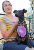 1Chloè - Camogli - 16-08-2014 - Premio internazionale fedeltà del cane: vince Chloé