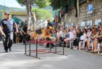 Bangi - Camogli - 16-08-2014 - Premio internazionale fedeltà del cane: vince Chloé