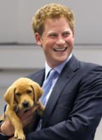Principe Harry - Sussex - 13-07-2010 - Principe Harry: i 30 anni dello scapolo più ambito al mondo