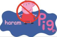 """Zayn Sheikh, Muslims against Peppa - Leeds - 05-09-2014 - """"Muslims against Peppa Pig"""": un padre lancia una petizione"""