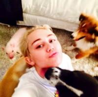 Miley Cyrus - New York - 08-09-2014 - Miley Cyrus mezza nuda all'afterparty di Alexander Wang