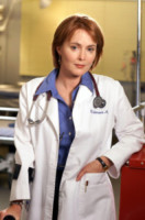 Laura Innes - Hollywood - 26-09-2014 - ER compie vent'anni: ecco com'è cambiato il cast
