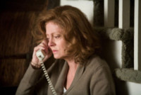 In the Valley of Elah, Susan Sarandon - Hollywood - 28-11-2014 - Susan Sarandon: