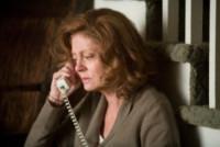 In the Valley of Elah, Susan Sarandon - Hollywood - 28-11-2014 - Susan Sarandon: