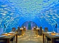 Underwater Restaurant - 18-01-2015 - I 10 ristoranti più strani al mondo: li hai mai provati?