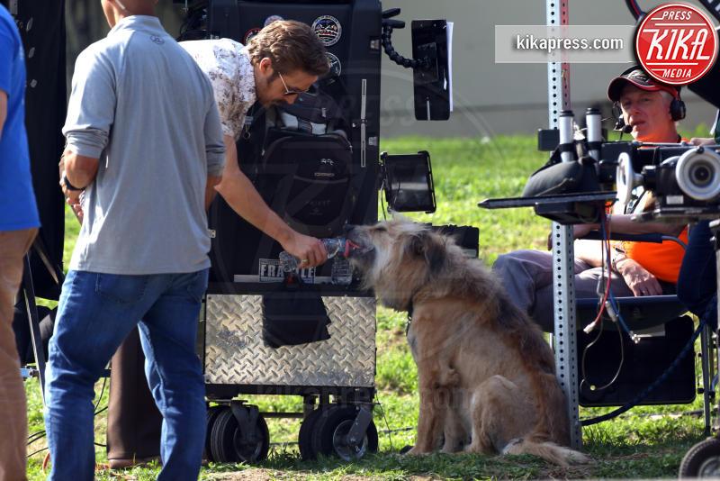 Ryan Gosling - Los Angeles - 03-02-2015 - Star come noi: la vita non è la stessa senza un cane